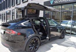 Tesla X75DDSC_0361