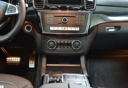 Mercedes Benz GLS 350d-002 (2)